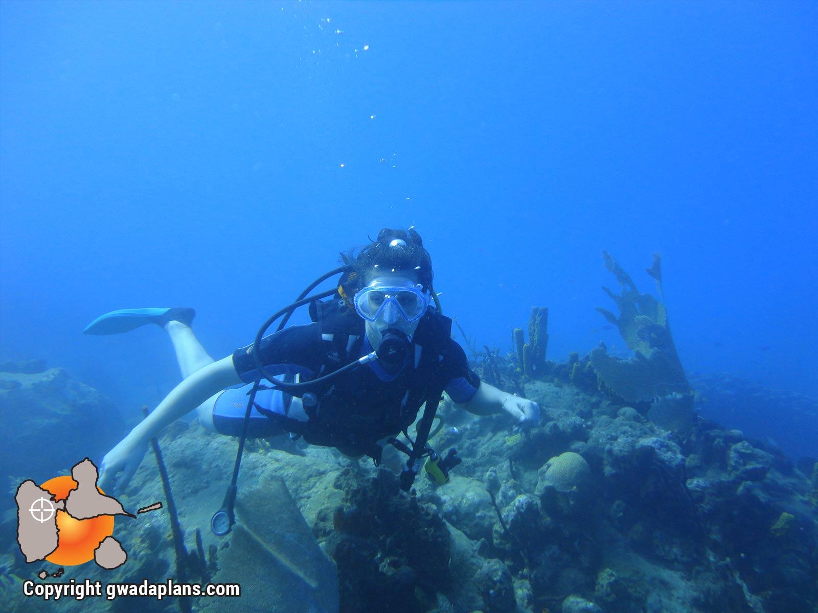 Plongeur réserve cousteau