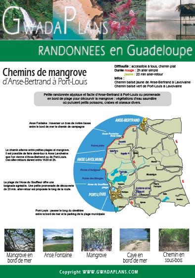 Télécharger la fiche Chemins de Mangrove - Guadeloupe