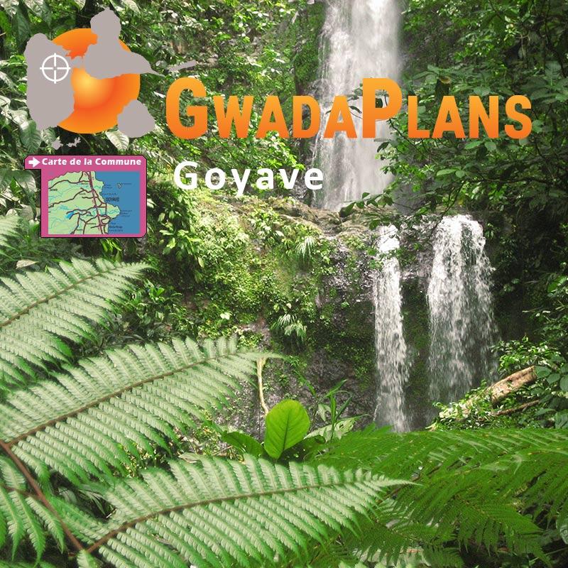 Goyave Guadeloupe