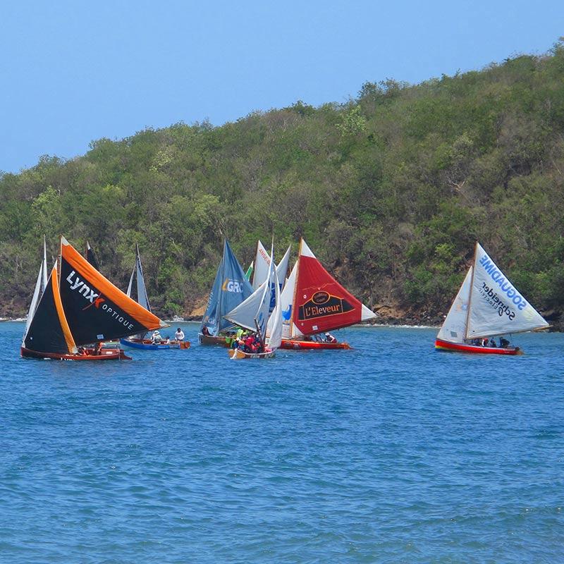 Activités voile Guadeloupe