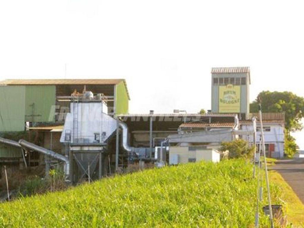 Distillerie Bologne Guadeloupe