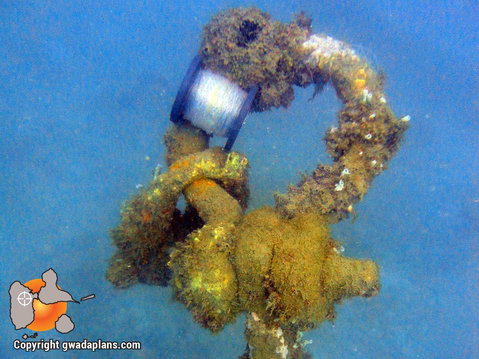 Epaves Anse à la Barque : haut d'une ancre de 2 mètres