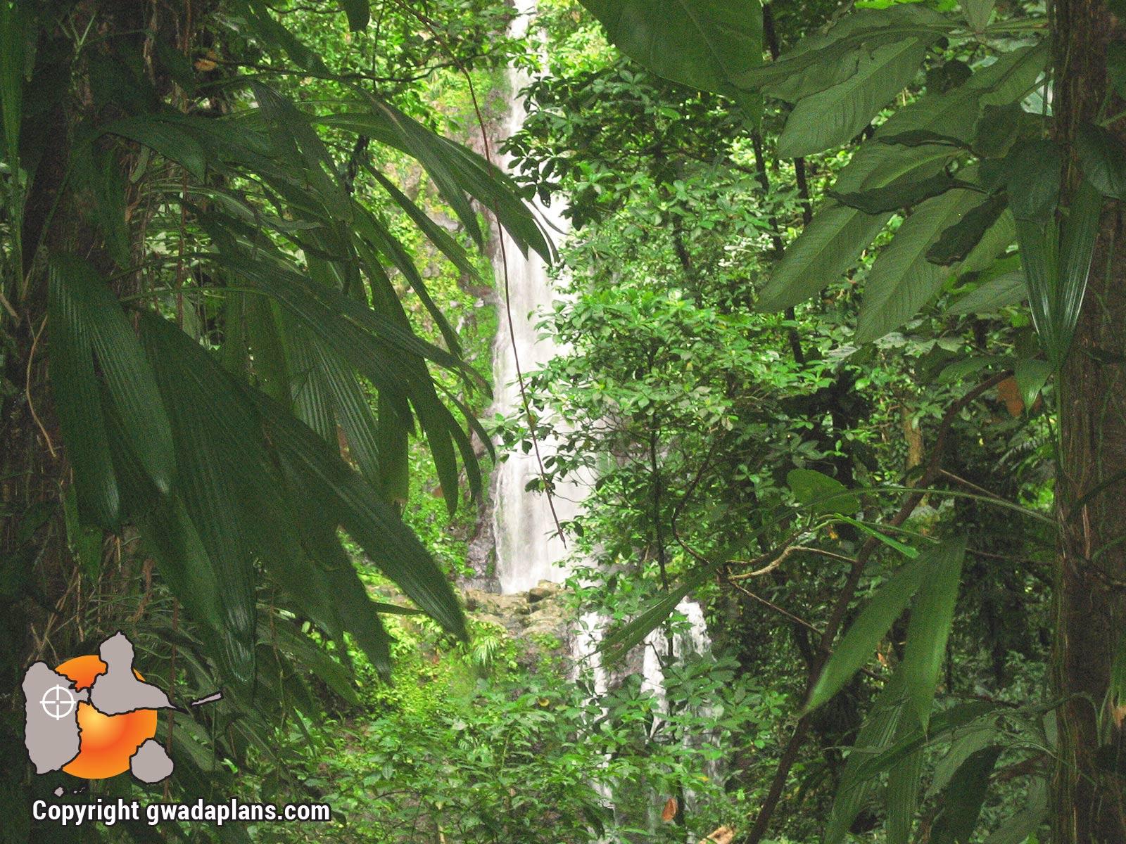 Chute Moreau - Guadeloupe