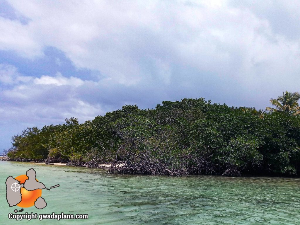 Ilet Fortune - Guadeloupe