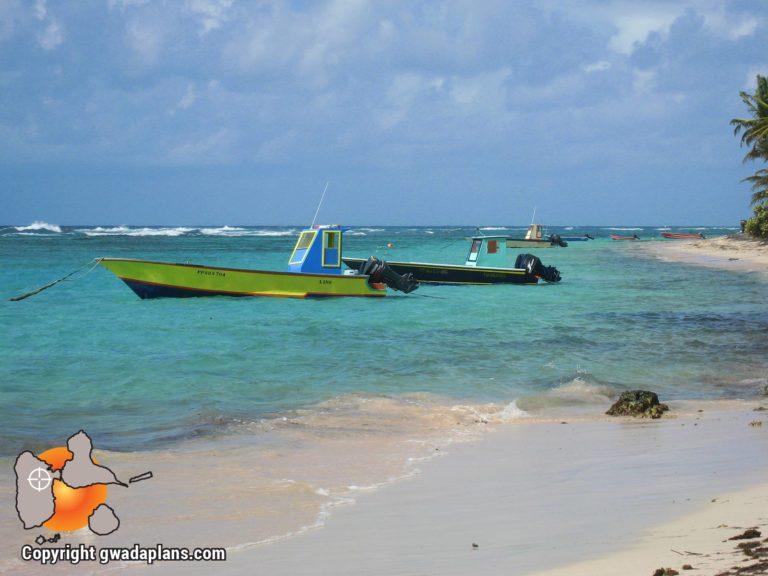 La côte de plage - La Désirade