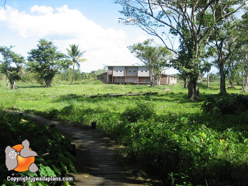 Maison de la mangrove - Les Abymes