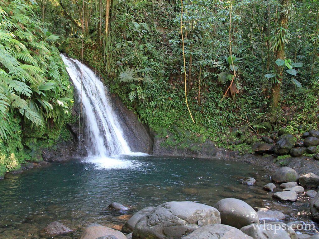 Cascade aux écrevisses - Guadeloupe