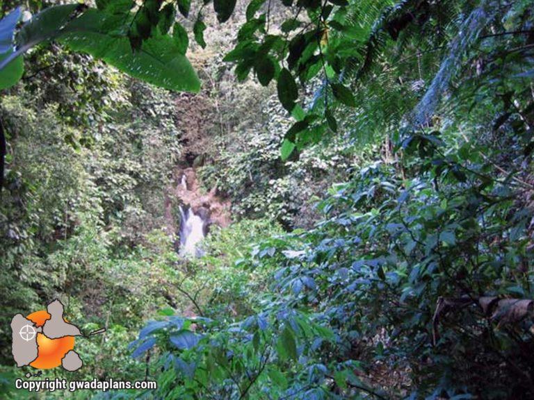 Cascade Vauchelet - Guadeloupe