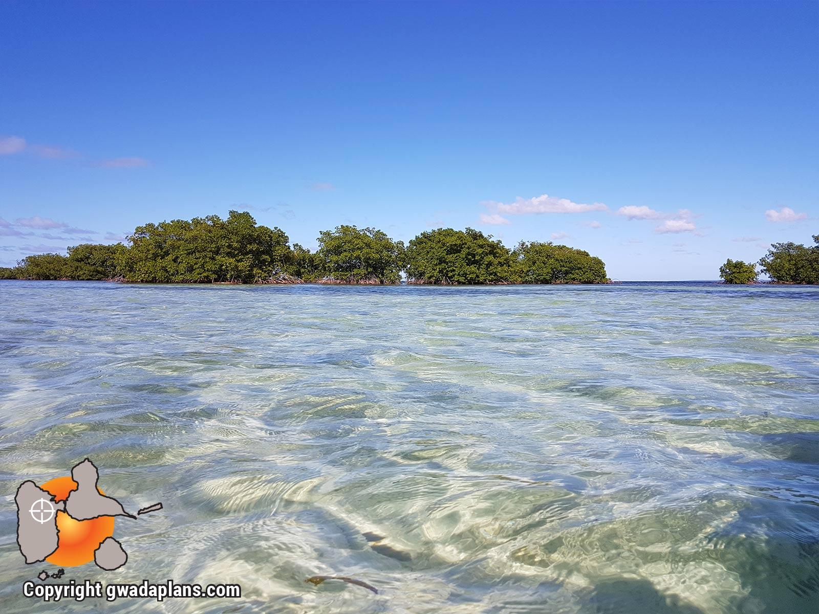 Réserve Marine Guadeloupe