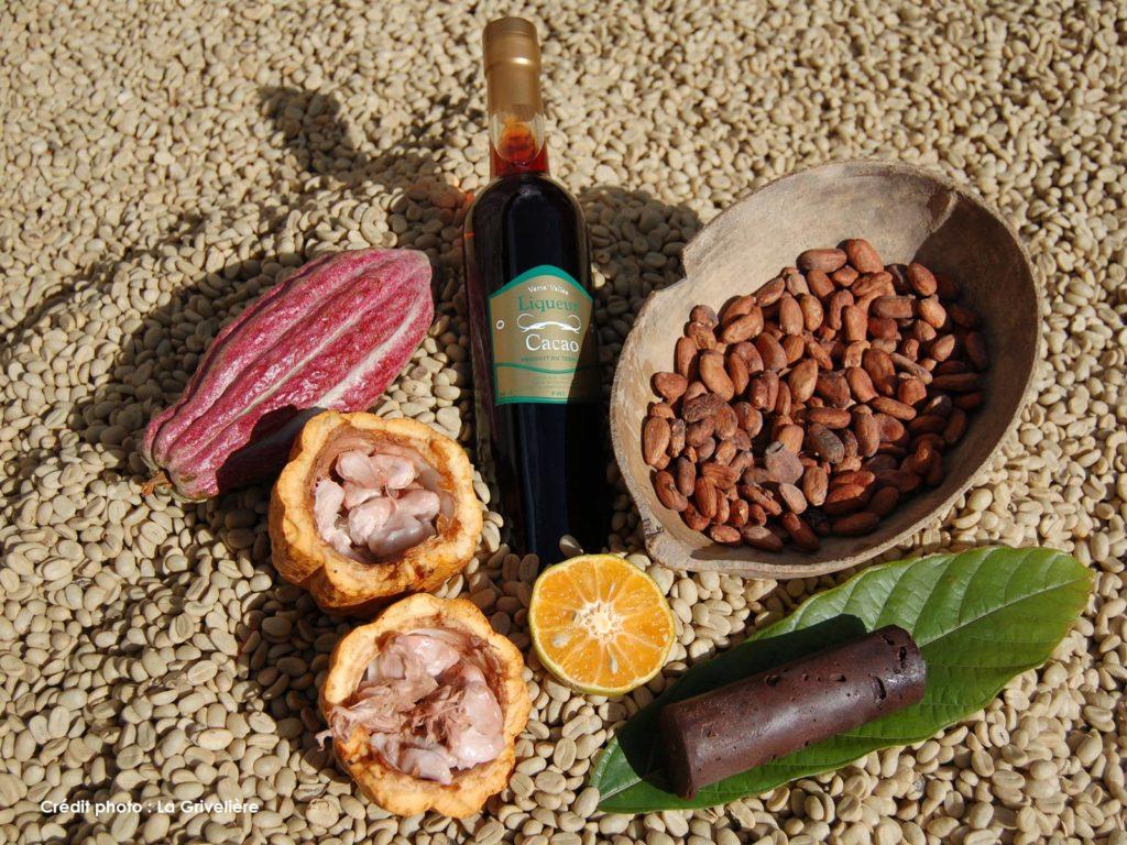 Habitation La Grivelière - Cacao