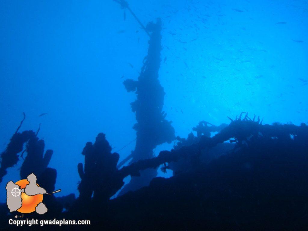 Epave Gustavia – Réserve Cousteau