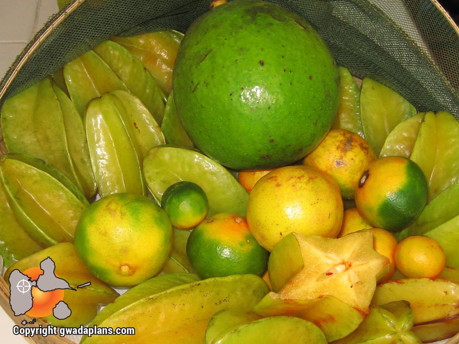 Avocat, caramboles et citrons verts - Gastronomie Guadeloupe