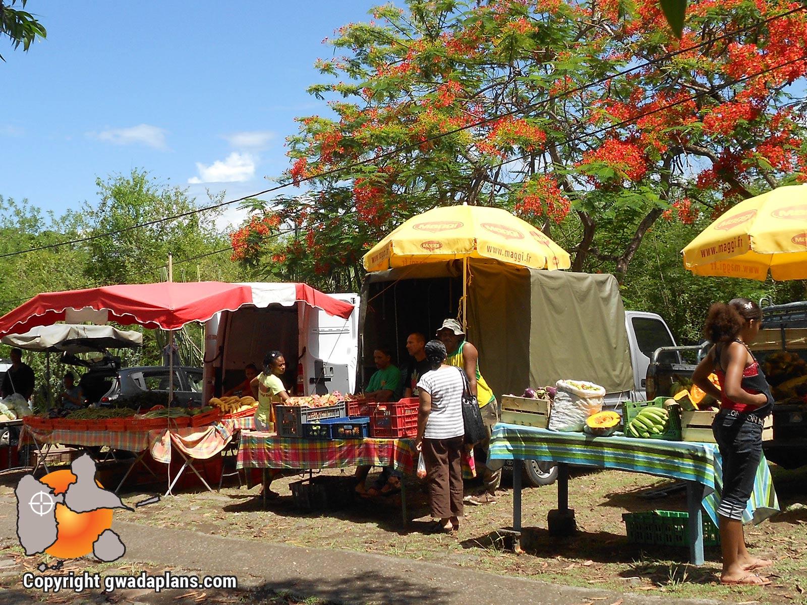 Marché - Vie locale Guadeloupe