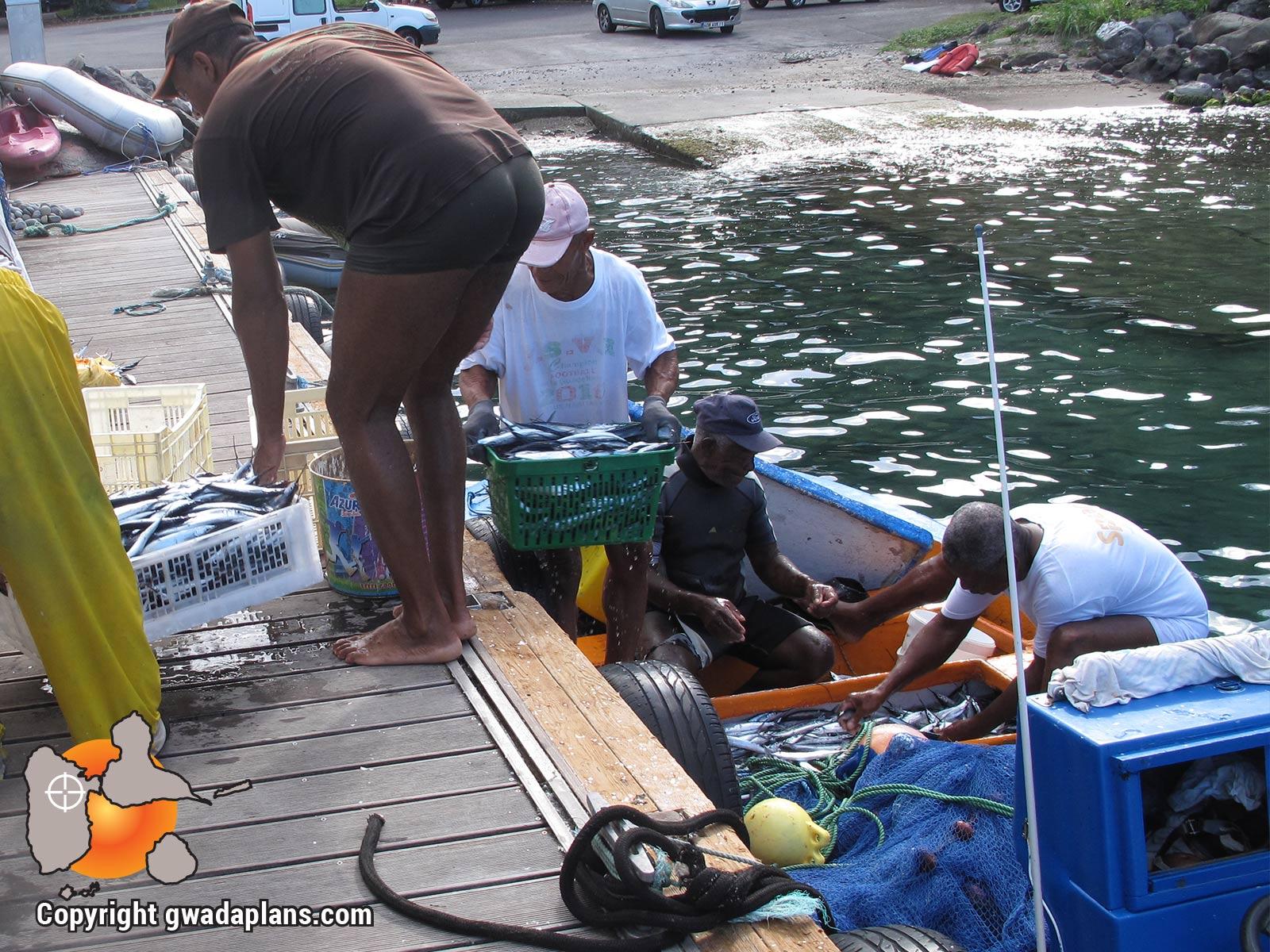 Pêche traditionelle - Vie locale Guadeloupe
