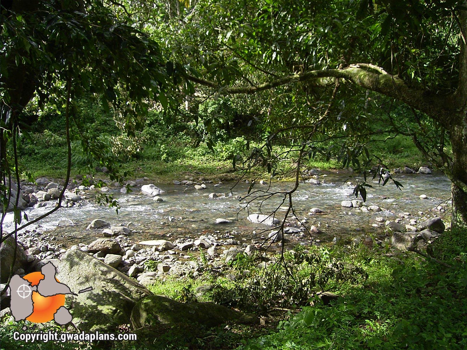 Rivière de Beaugrendre - Vieux-Habitants