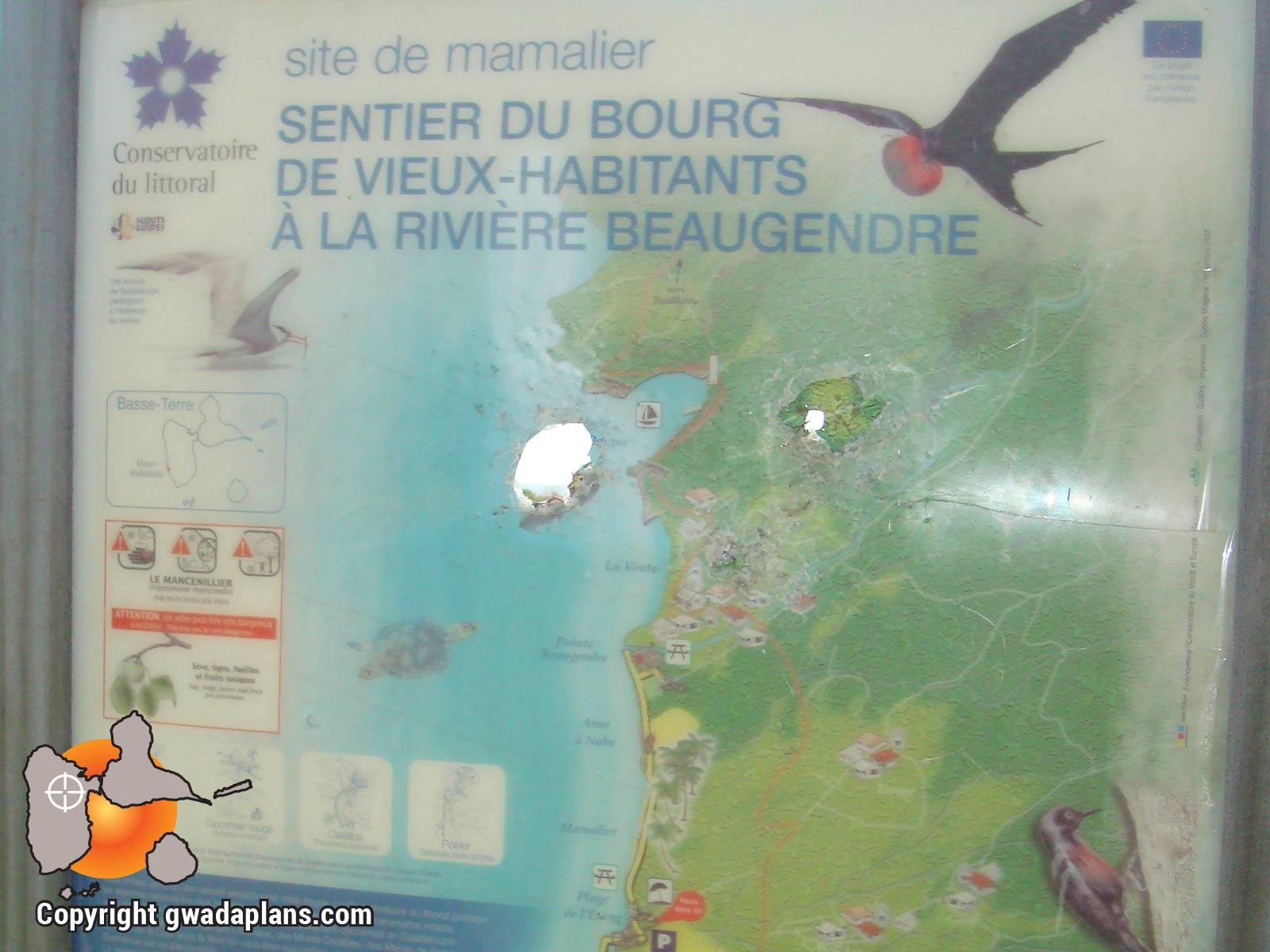 Sentier de Mamalier - Vieux-Habitants