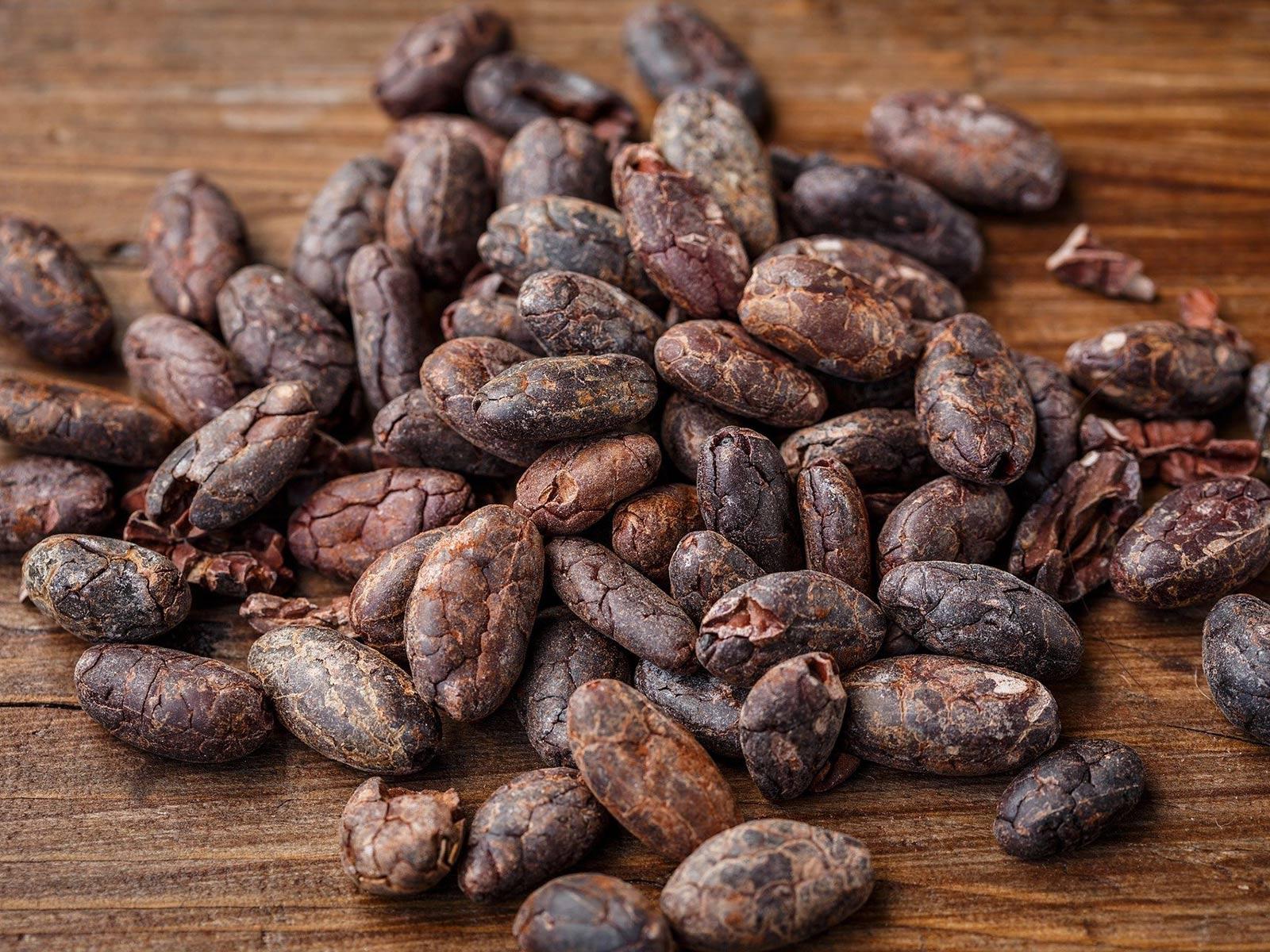 Culture du cacao : fèves torréfiées