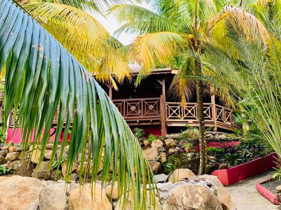 Gîtes L'ilots Palmier en Guadeloupe